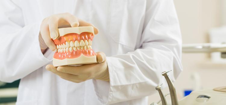 入れ歯はこまめに洗浄を。 毎日の正しい手入れ方法